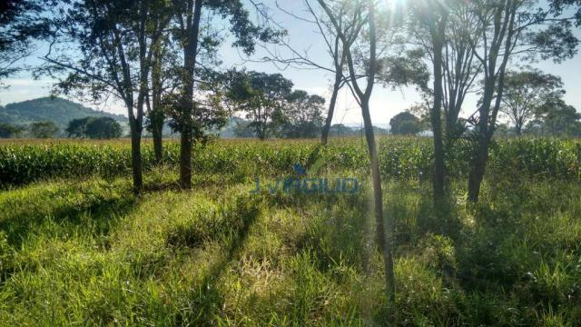 Área à venda, 290400 m² por R$ 1.200.000,00 - Zona Rural - Nazario/GO