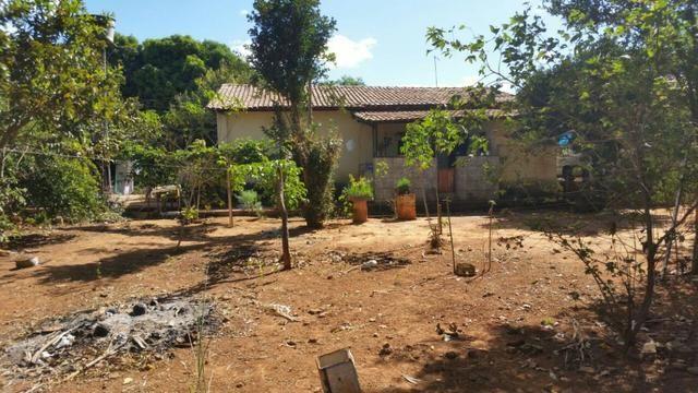 Vendo Lotes com Casas / oportunidade - Foto 3