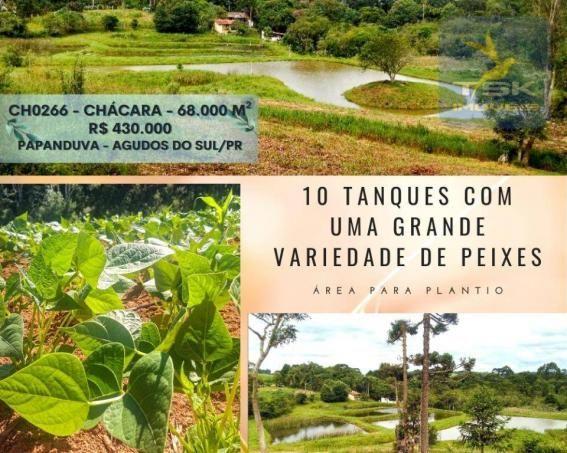 CH0266 - Chácara, 68.000 m² à venda por R$430.000. Agudos do Sul/PR.