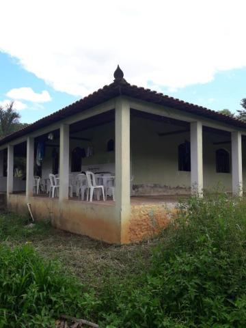 Sítio à venda com 3 dormitórios em Zona rural, Lamim cod:12828 - Foto 5