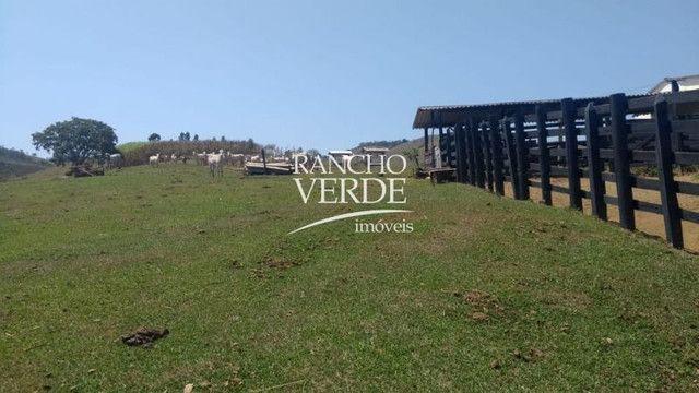 Fazenda em São Luiz do Paraitinga - Cód 2244 - Foto 19