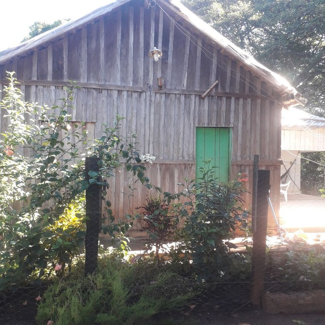 Sítio 118 hectares em coqueiral  - Foto 2