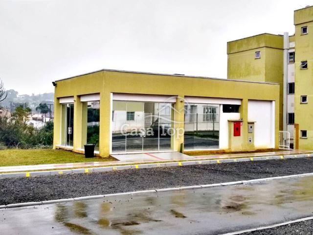 Apartamento à venda com 3 dormitórios em Rfs, Ponta grossa cod:2152 - Foto 9