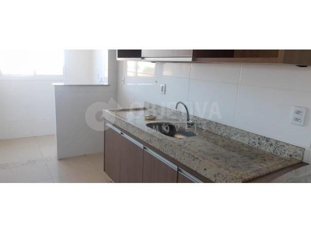 Apartamento para alugar com 2 dormitórios em Santa monica, Uberlandia cod:468062 - Foto 6