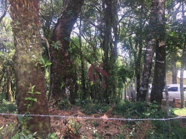 Terreno à venda no Jardim Mariana em Canela/RS - Foto 13