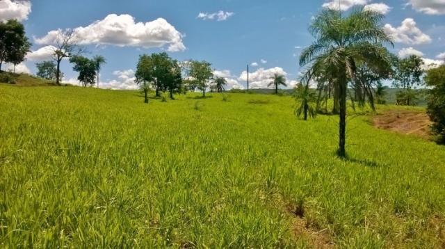 Fazenda em FORMOSA - GO, p/ Pecuária  - Foto 6