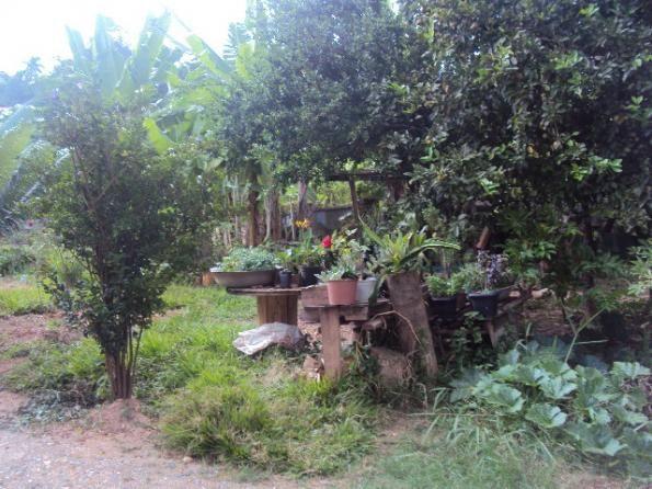 Loteamento/condomínio à venda com 3 dormitórios em Caiçaras, Belo horizonte cod:1307 - Foto 6