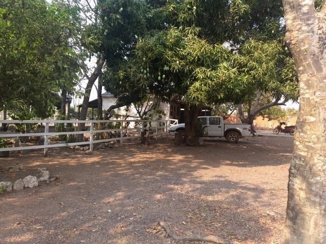 Chácara 2.5 ha, linha 16 cinturão verde