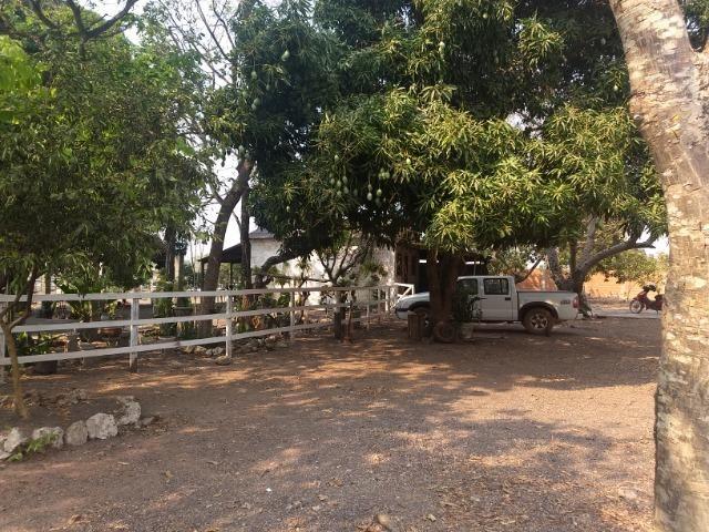 Chácara 2.5 ha, linha 16 cinturão verde - Foto 15