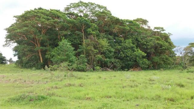 Vendo chácara beira rodovia br 163 - entre Jaraguari e Bandeirantes
