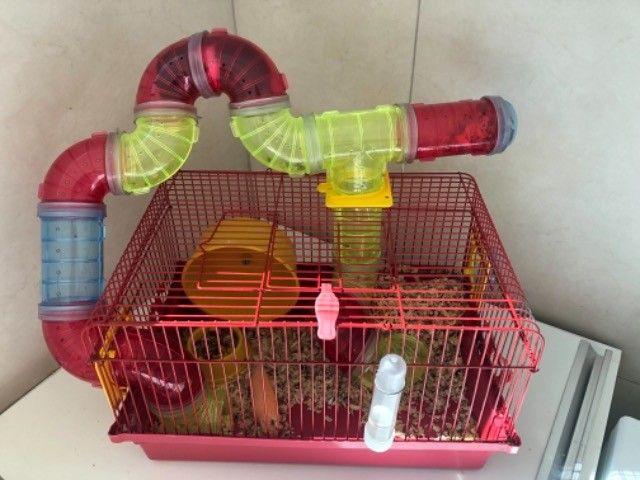 Gaiola Para Hamster Com Tubos De Luxo  + bola de exercícios - Foto 4