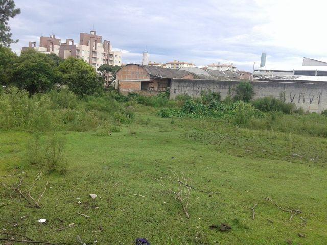 Área urbana com 04 lotes - Foto 6
