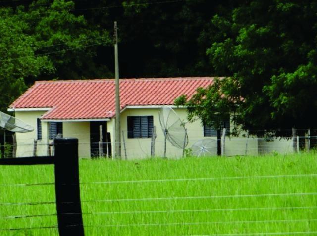 FAZENDA A VENDA EM MS.  PANTANAL ALTO ( Pecuária)  - Foto 7