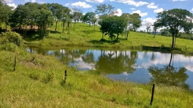 Fazenda em FORMOSA - GO, p/ Pecuária  - Foto 9
