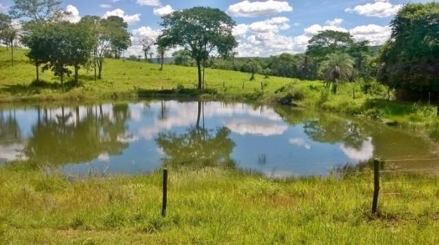Fazenda em FORMOSA - GO, p/ Pecuária  - Foto 8