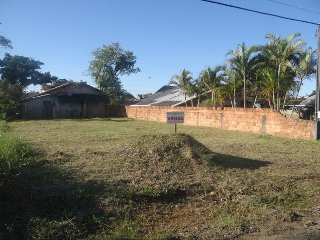 Lindo terreno na Praia, na região do Centro de Bal Barra do Sul - Foto 3