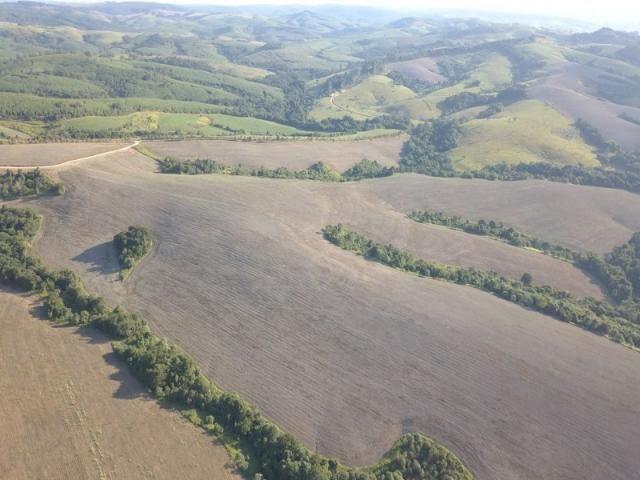 Vendo fazenda 350 alqueires em arapoti-pr - Foto 14