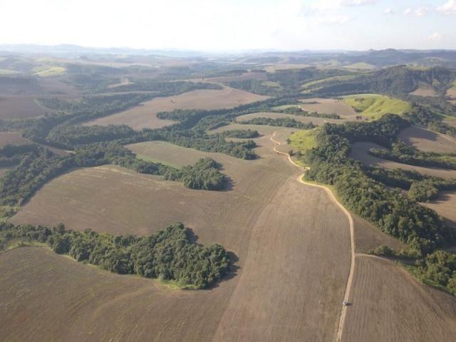 Vendo fazenda 350 alqueires em arapoti-pr - Foto 2