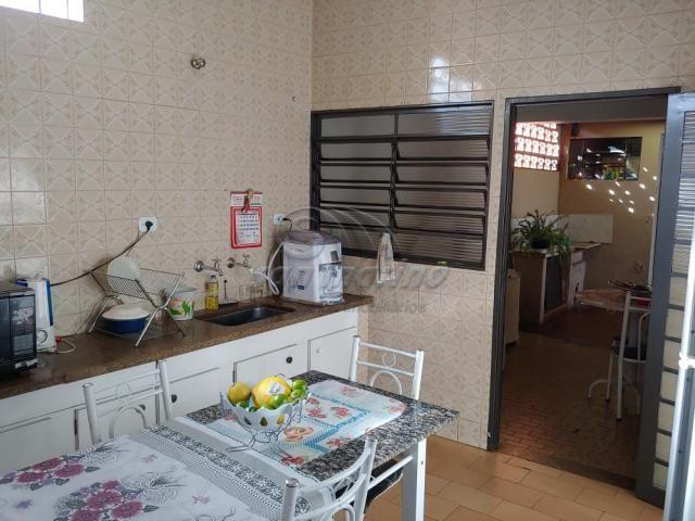 Casa à venda com 3 dormitórios em Jardim kennedy, Jaboticabal cod:V4563 - Foto 4