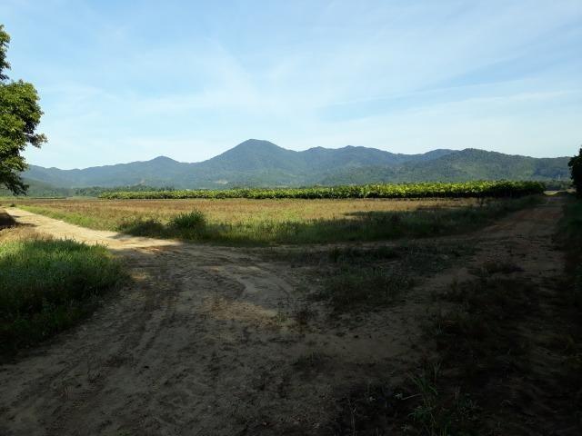 Fazenda Linda para Plantio de Arroz, Aceita parte Parcelado - Foto 10