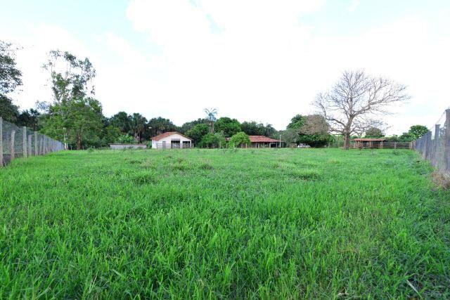 Chácara 1,5 alqueires município Morrinhos - Foto 12