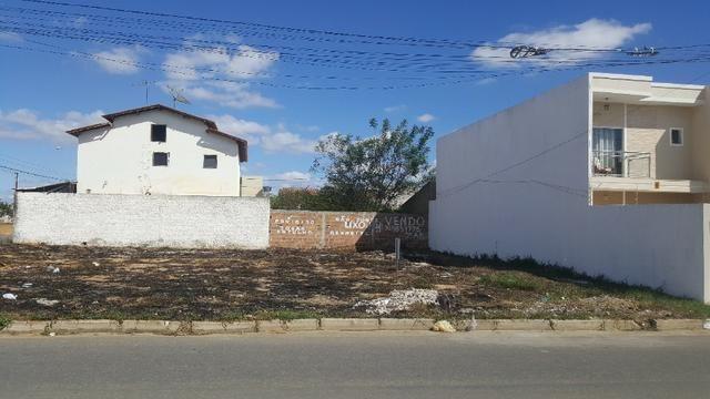 Lote 453m2, Morada dos Pássaros - Foto 2