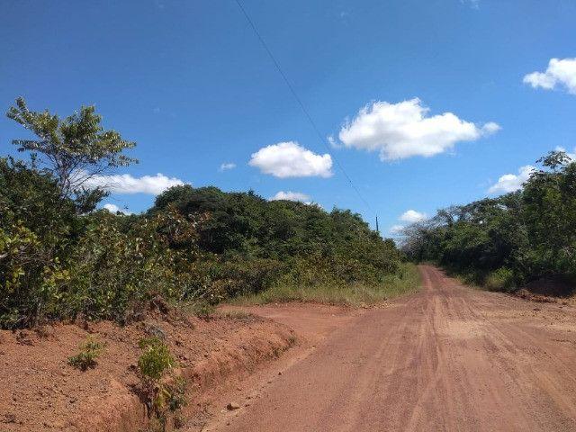 50 hectares na estrada de igarapé açu por 170 mil reais documentada - Foto 10