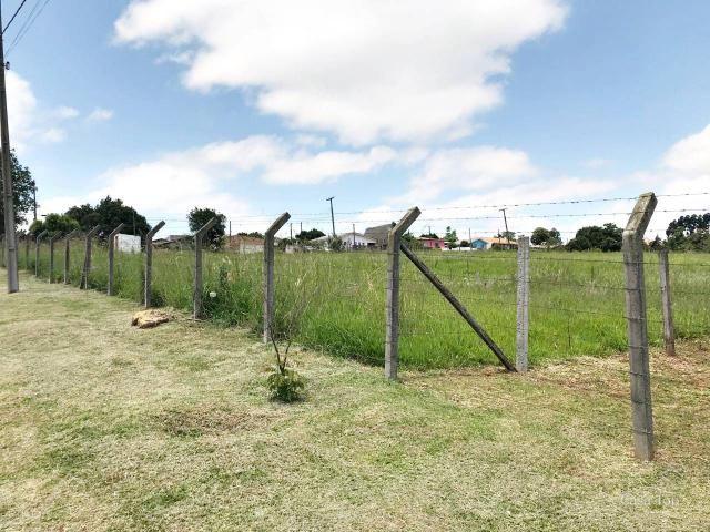 Terreno à venda com 2 dormitórios em Shangrila, Ponta grossa cod:854 - Foto 2