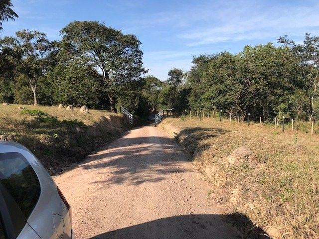 Fazenda/Sítio/Chácara para venda possui * metros quadrados - Foto 4