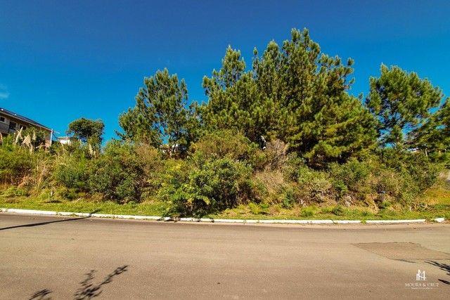 Terreno à venda em Morada da serra, Gramado cod:2317