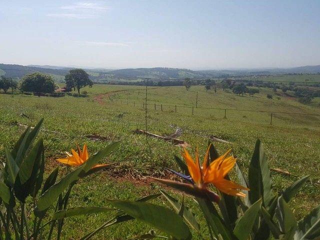 Fazenda/Sítio/Chácara para venda tem 1100000 metros quadrados