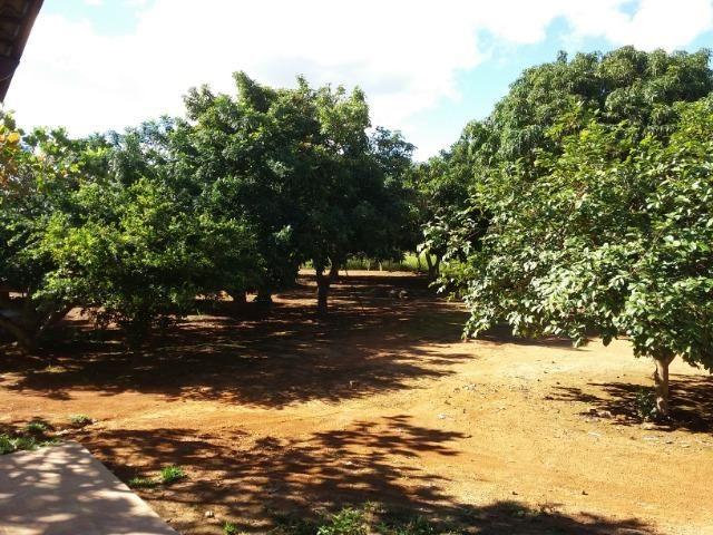 Ótima fazenda 42 Hectares dentro do DF, com água - Foto 5