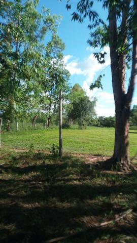 215A/Fazenda de 485 ha com outorga para irrigação às margens do Rio São Francisco - Foto 11