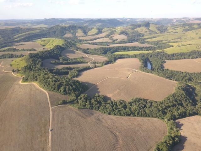 Vendo fazenda 350 alqueires em arapoti-pr - Foto 7