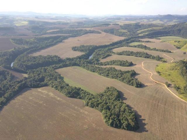 Vendo fazenda 350 alqueires em arapoti-pr - Foto 8