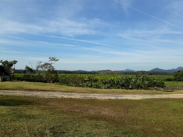 Fazenda Linda para Plantio de Arroz, Aceita parte Parcelado - Foto 18