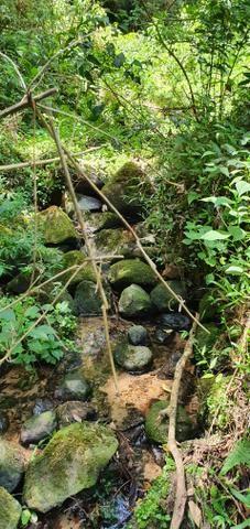 Sitio em Urubici/área em Urubici/chácara em Urubici - Foto 2