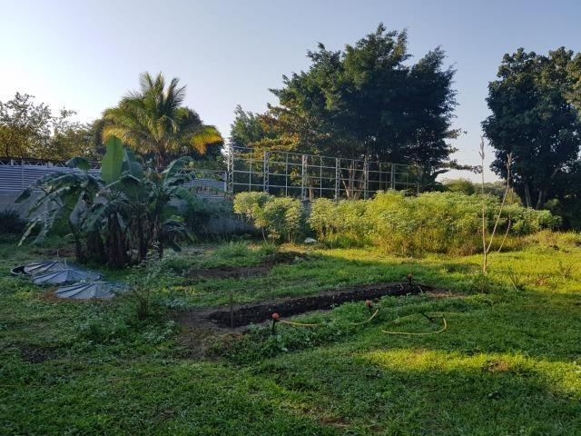 Aluguel para festas e eventos Maravilhoso sitio em Tinguá - Foto 3