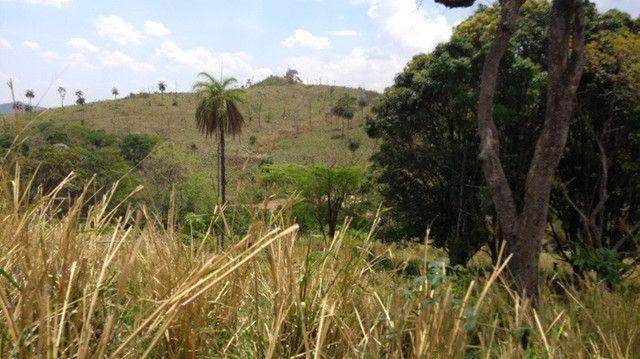 Fazenda 80 ha em Para de Minas/MG - Foto 20