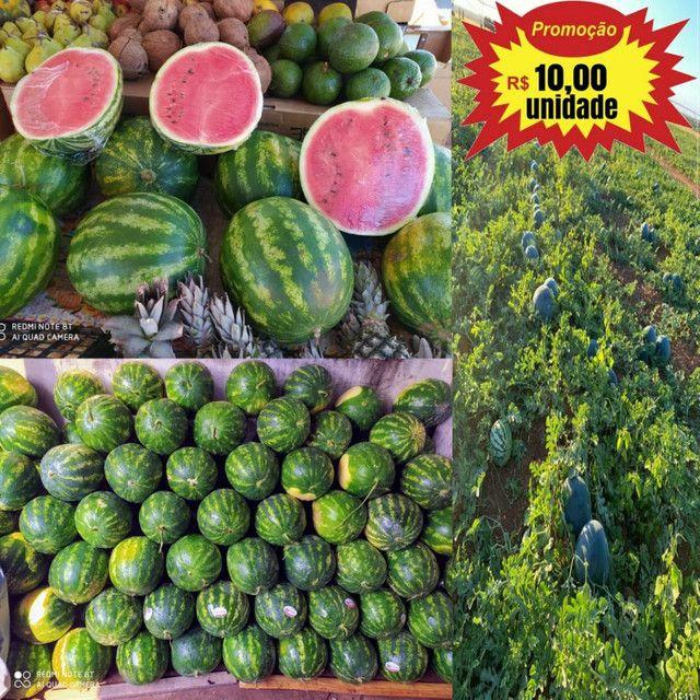 Melancias Direto da Fazenda - Foto 3