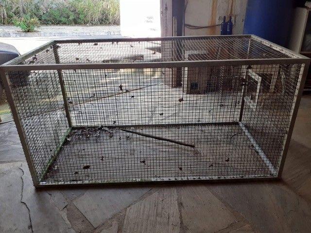 Gaiola/Viveiro galvanizada, acabamento alumínio, tenho várias  - Foto 2