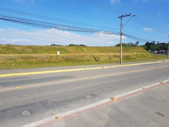Terrenos comerciais de frente para a rua Santa Catarina no bairro Floresta - Foto 6
