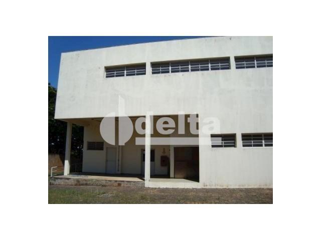 Galpão/depósito/armazém para alugar em Santa mônica, Uberlândia cod:532515 - Foto 2