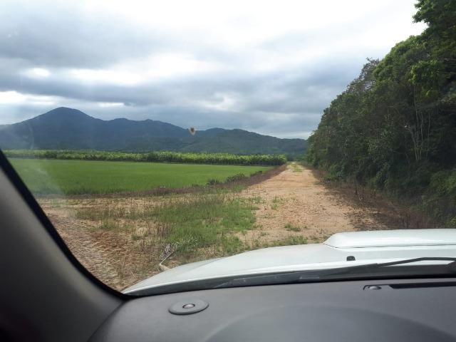 Fazenda Linda para Plantio de Arroz, Aceita parte Parcelado - Foto 3