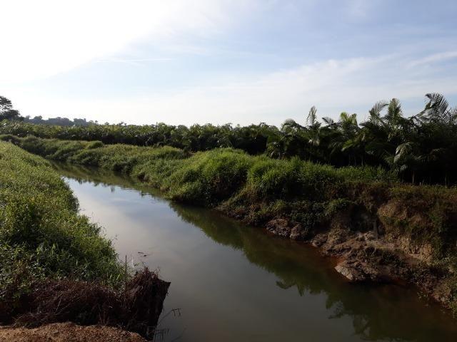 Fazenda Linda para Plantio de Arroz, Aceita parte Parcelado - Foto 20