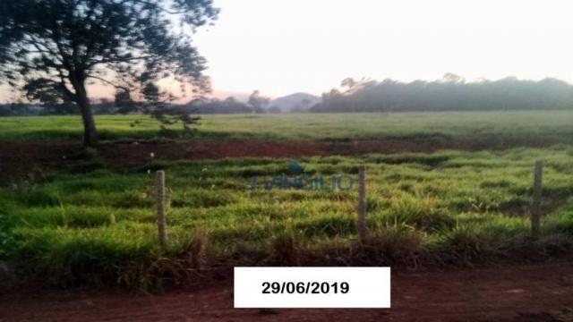 Área à venda, 290400 m² por R$ 1.200.000,00 - Zona Rural - Nazario/GO - Foto 5