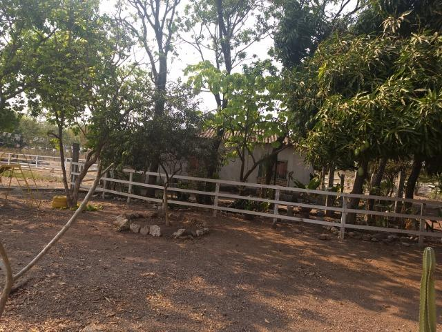 Chácara 2.5 ha, linha 16 cinturão verde - Foto 17