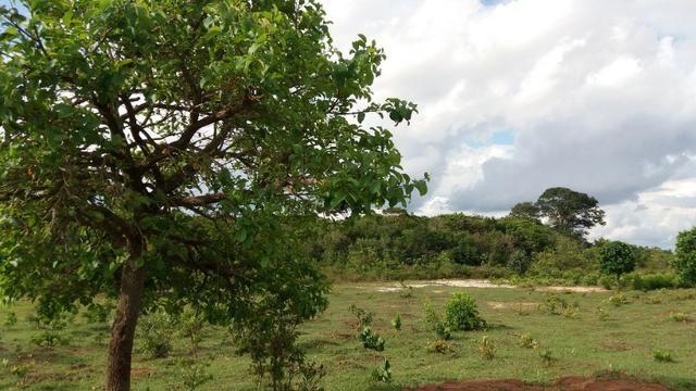 Vendo chácara beira rodovia br 163 - entre Jaraguari e Bandeirantes - Foto 2