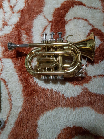 Trompete Pocket Shelter dourado. - Foto 2