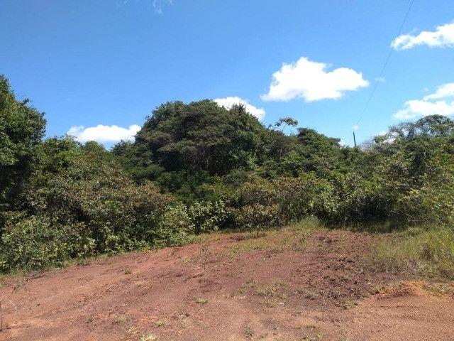 50 hectares na estrada de igarapé açu por 170 mil reais documentada - Foto 3